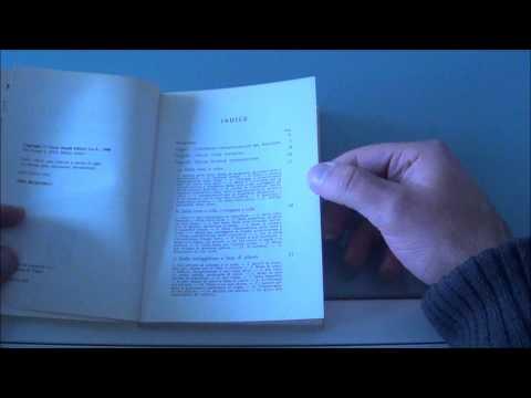 Recensione del libro L'imbianchino di Damaso Franzoni edito da Ulrico Hoepli.