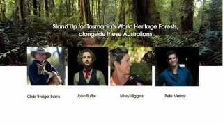 Tasmanian World Heritage Wilderness Under Threat part 2