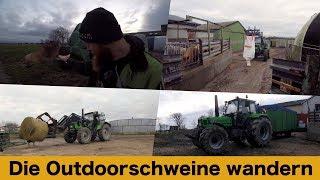 FarmVLOG#177 - Die Outdoorschweine wandern