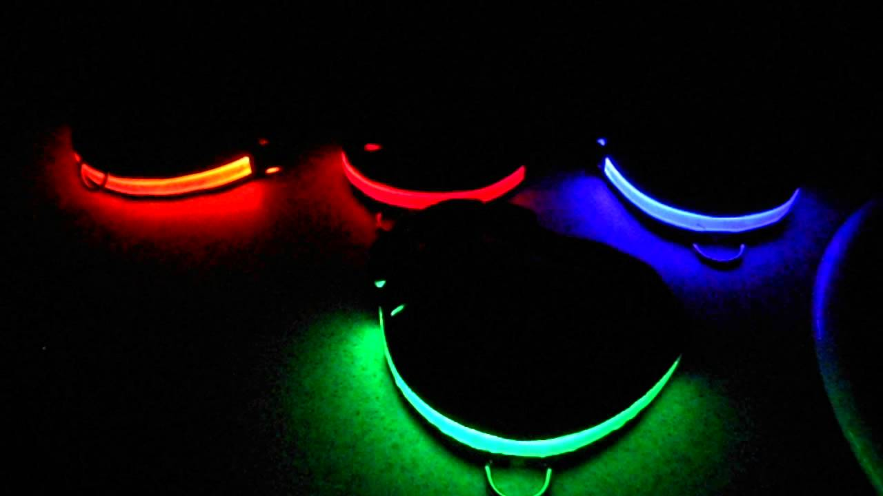 Dog Collars Led Light Up Wow Pet Safety Chain Id