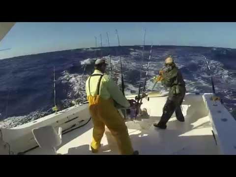Hatteras Fishing Trip 2013