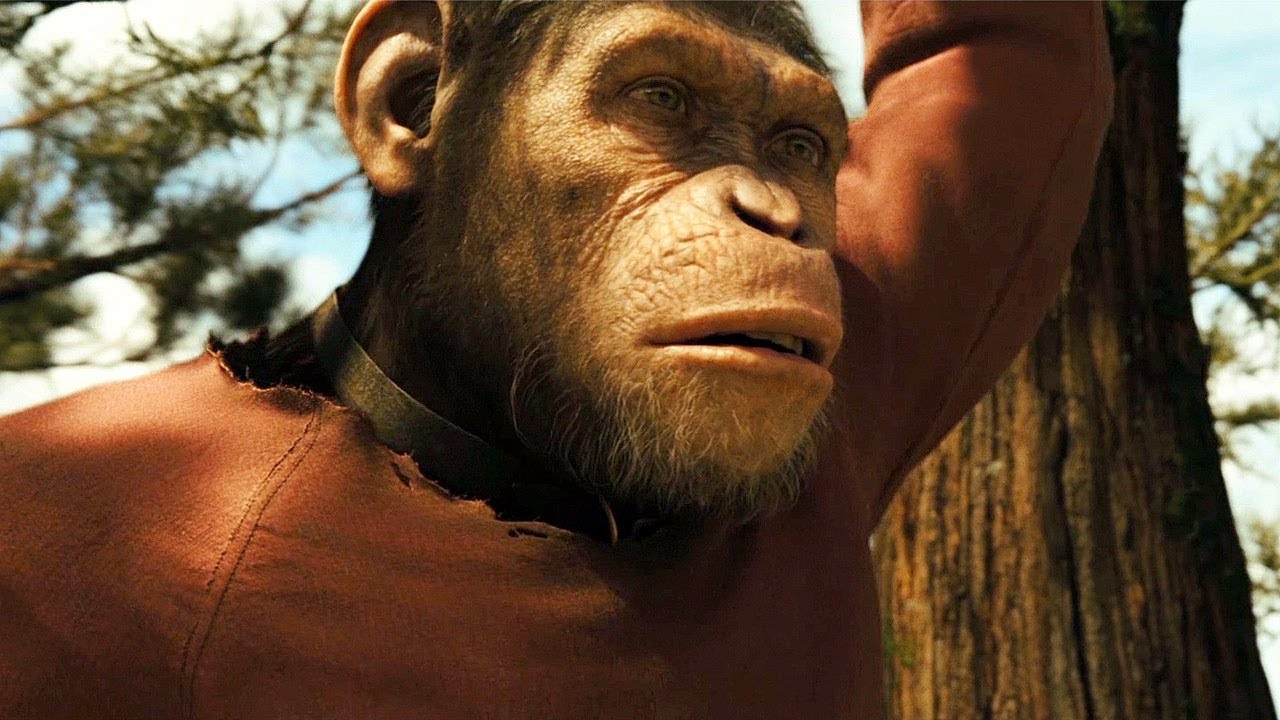 Caesar Growing Up Scene Rise Of The Planet Of The Apes 2011 Movie Clip Hd Youtube
