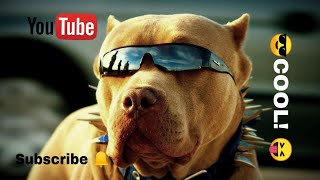 CUTE PUPPIES AND TOP DOGS Compilation
