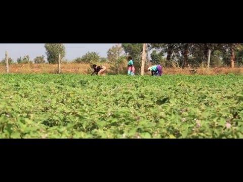 Kheyti - Small Farmer | Smart Farmer