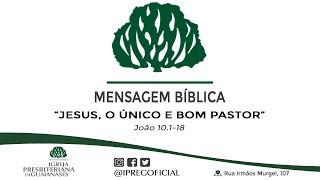 Jesus, o único e bom pastor - Mensagem Bíblica - João 10. 1-18