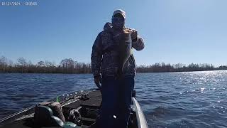 Pre spawn bass fishing on the flats of Sheldon Reservoir