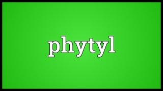 Phytyl Meaning