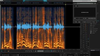 RX Audio Repair Master Class | iZotope RX 5 Audio Editor Tips & Tricks