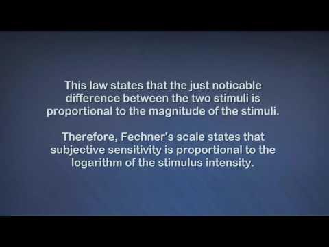 Weber Fachner Law