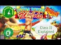 😄 Wild Texa'Coins slot machine, Happy Goose, Class II Explained