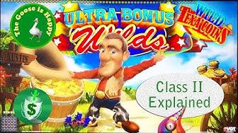 😄 Wild Texa'Coins slot machine, Happy Goose, Class II Explained