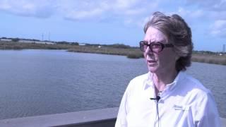 Sarasota Audubon Plans Nature Center