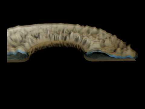 Image-Based Modeling of the Human Eye