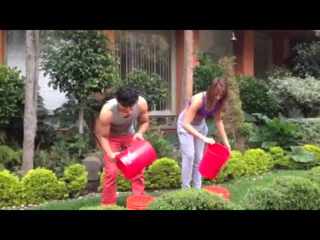 Miguel Martinez Y Jade Fraserl Icebucketchallenge Youtube Please use a supported version for the best msn experience. youtube