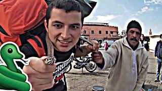 Zaklinacze węży i zupa cebulowa || Autostopem po Maroko #3