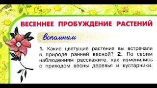 """Окружающий мир 2 класс ч.2, Перспектива, с.74-77, тема урока """"Весеннее пробуждение растений"""""""