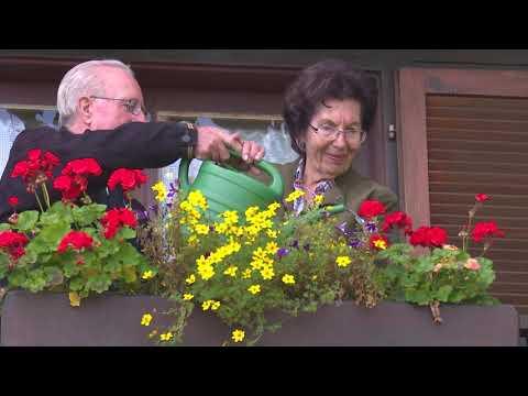 Blumenpflege In Der Heißen Jahreszeit