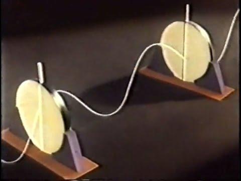 Поляризация света, 1981
