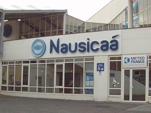 Nausicaa 2015