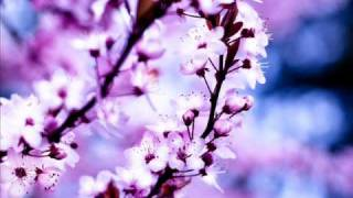 OtherView & Consoul Trainin - Wonderwall (Livin R & K Mass Mix) Vocals by Gabriella Ellis