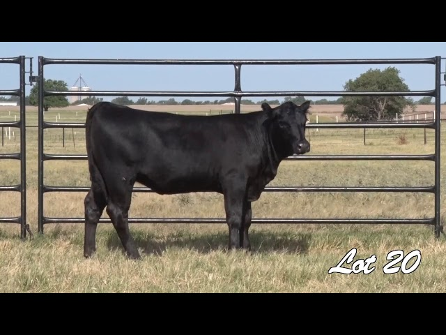 Pollard Farms Lot 20