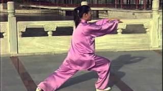 Тайцзицюань стиль Ян, комплекс 24 формы - 24 формы спина