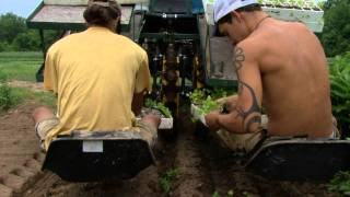 Small Farm Rising Educational Videos Water Wheel Transplanter.mov