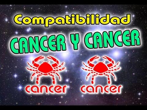Cancer Con Cancer Compatibilidad En El Amor 2021 Compatibles Cancer Con Cancer 2021 Youtube