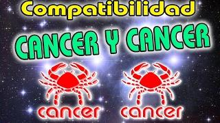 Cancer Con Cancer Compatibilidad En El Amor 2018 Compatibilidad Cancer Con Cancer 2018 Youtube