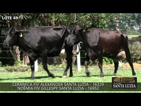 SANTA LUZIA   LOTE 49