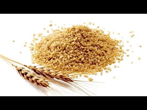 Bulgur Wheat 101 | Everything You Need To Know