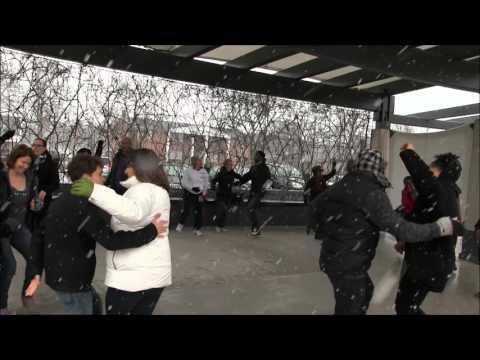 Detroit Michigan Rueda De Casino International Flash Mob  at Shain Park 2016