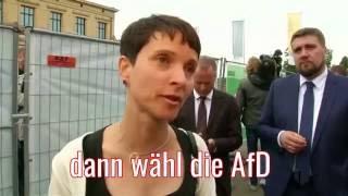 Wähl die AfD Gruppe Gutzeit covert Jennifer Rostock