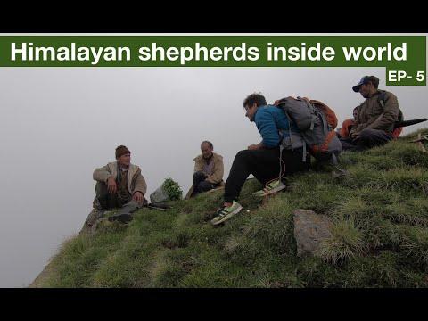 Download Himalayan shepherds inside world. Munsiyari - Uttarakhand motorcycle diaries Part-6