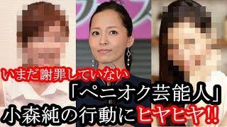 いまだ謝罪していない「ペニオク芸能人」小森純の行動にヒヤヒヤ 小森純 検索動画 27
