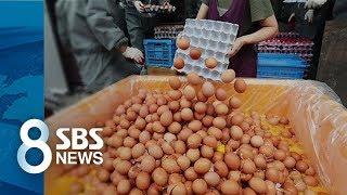 '사용 불가' 말 바꾼 농식품부...나랏돈으로 살충제 공급 / SBS