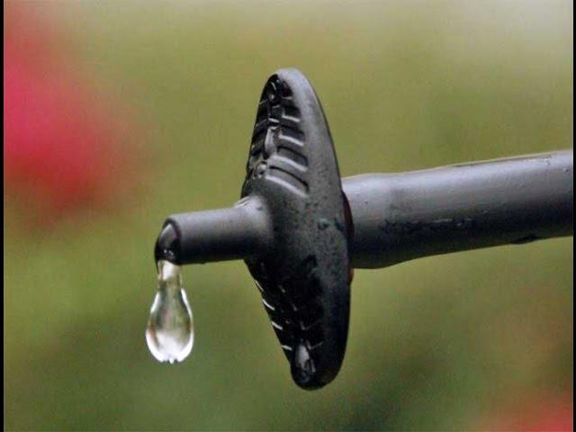 Micro Drip Irrigation