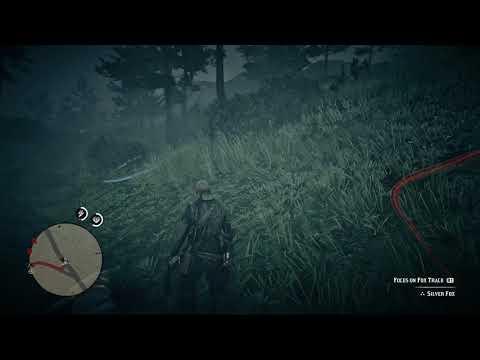 komentář kolem-jedoucího na můj úlovek - Red Dead Redemption 2