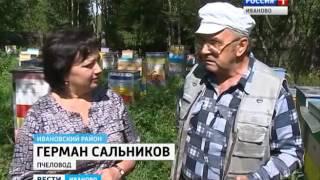Новые правила по пчелам Сюжет от 17.08.2016