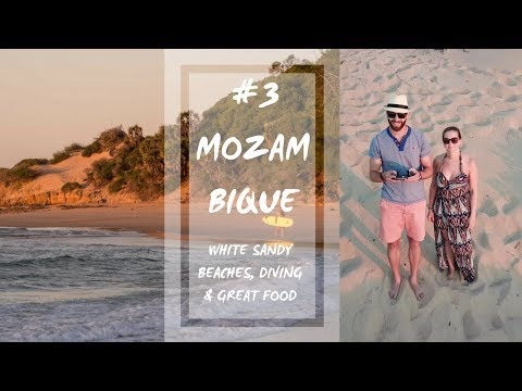 Meet the biggest fish in the sea | #3 Mozambique