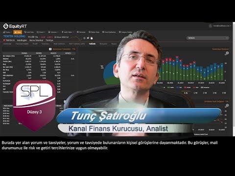 TKFEN Tekfen Holding Hisse Analizi 2020