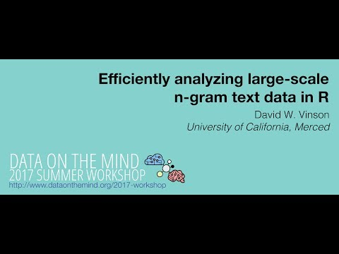 [Data on the Mind 2017] Efficiently analyzing large-scale n-gram text data in R