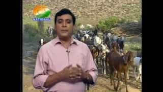 Krishi Darshan National 02