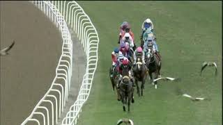 Vidéo de la course PMU PRIX HOLLYWOODBETS THUKELA