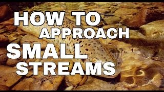 How To Approach Small Trout Streams - Fly Fishing 101 for Beginners