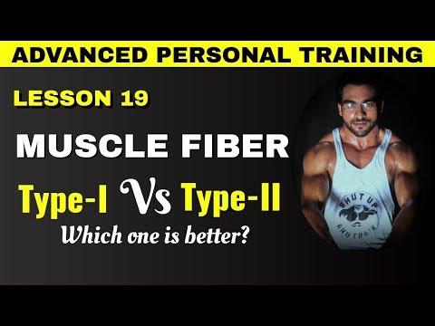 Type 1 vs Type 2 muscle fiber || muscle fiber classification