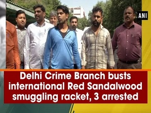 Delhi Crime Branch Busts International Red Sandalwood Smuggling Racket, 3 Arrested - #ANI News