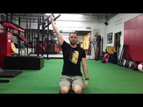 Upper Body Mobility Routine