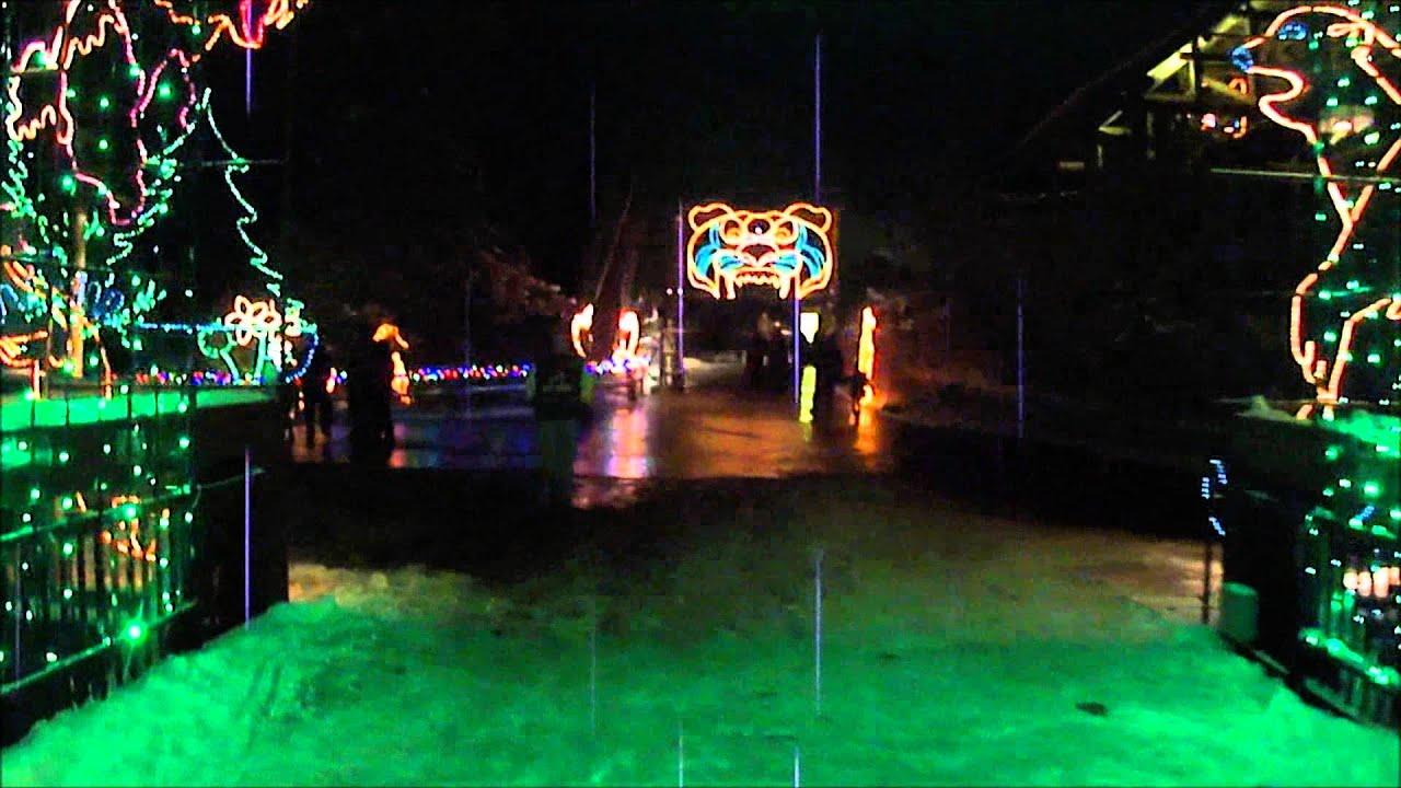 Boo Lights Hogle Zoo
