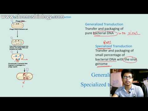 Generalized transduction vs Specialized Transduction